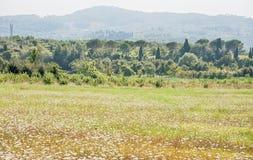 τοπίο Τοσκάνη στοκ εικόνες