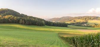 Τοπίο του βαυαρικού δάσους με την άποψη στο βουνό η μικρή και μεγάλη Rachel στοκ φωτογραφίες