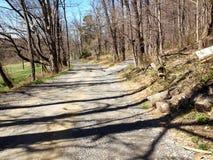Τοπίο του βρώμικου δρόμου που πηγαίνει στο δάσος Στοκ φωτογραφίες με δικαίωμα ελεύθερης χρήσης
