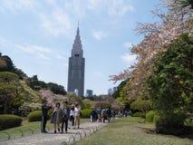 Τοπίο του εθνικού κήπου Shinjuku Gyoen στοκ εικόνα με δικαίωμα ελεύθερης χρήσης