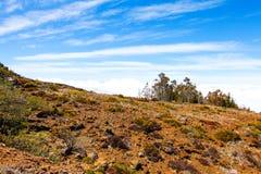Τοπίο του εθνικού πάρκου Haleakala, Maui, Χαβάη Στοκ φωτογραφία με δικαίωμα ελεύθερης χρήσης