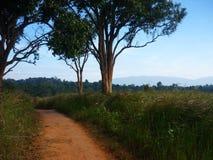 Τοπίο του εθνικού πάρκου Khao Yai στοκ εικόνες