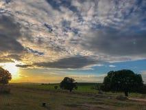 Τοπίο του λιβαδιού στο ηλιοβασίλεμα με τη βαλανιδιά ακροποταμιών και το μπλε ουρανό και τα σύννεφα στην Ισπανία Στοκ εικόνες με δικαίωμα ελεύθερης χρήσης