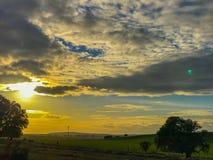 Τοπίο του λιβαδιού στο ηλιοβασίλεμα με τη βαλανιδιά ακροποταμιών και το μπλε ουρανό και τα σύννεφα στην Ισπανία Στοκ Φωτογραφία