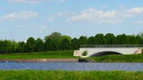 Τοπίο του ποταμού στο θερινό πάρκο απόθεμα βίντεο