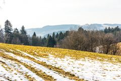Τοπίο του τομέα και του λιβαδιού γεωργίας Προετοιμασία για την άνοιξη Δέντρα κοντά στο δρόμο, μπλε ουρανός Στοκ Εικόνες