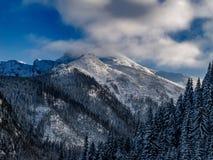 Τοπίο του όμορφου χειμώνα στοκ φωτογραφίες με δικαίωμα ελεύθερης χρήσης