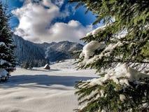 Τοπίο του όμορφου χειμώνα στοκ φωτογραφία