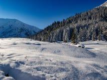 Τοπίο του όμορφου χειμώνα στοκ εικόνα