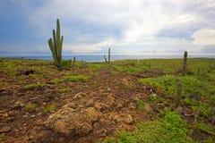 τοπίο του Aruba Στοκ φωτογραφίες με δικαίωμα ελεύθερης χρήσης