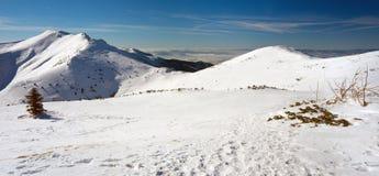 Τοπίο το χειμώνα, Mala Fatra, Σλοβακία Στοκ εικόνα με δικαίωμα ελεύθερης χρήσης