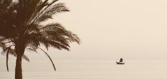 τοπίο τροπικό Στοκ φωτογραφία με δικαίωμα ελεύθερης χρήσης