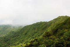 Τοπίο τροπικών δασών σε Monteverde Κόστα Ρίκα Στοκ Φωτογραφία