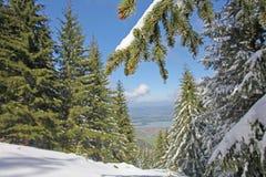 Τοπίο των Άλπεων στο χιόνι στοκ φωτογραφίες