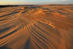 Αμμόλοφοι άμμου Silver Lake Στοκ Φωτογραφία