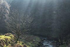Τοπίο των αναγνωριστικών σημάτων Brecon στην υδρονέφωση πρωινού στοκ φωτογραφία με δικαίωμα ελεύθερης χρήσης