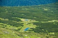 Τοπίο των βουνών και του φυσικού πράσινου δάσους βουνών Στοκ φωτογραφία με δικαίωμα ελεύθερης χρήσης