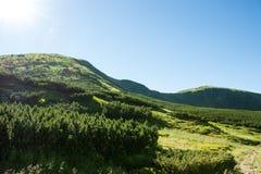 Τοπίο των βουνών και του φυσικού πράσινου δάσους βουνών Στοκ Φωτογραφία