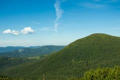 Τοπίο των βουνών και του φυσικού πράσινου δάσους βουνών Στοκ εικόνες με δικαίωμα ελεύθερης χρήσης