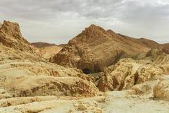 Τοπίο των βουνών με τους φοίνικες στην έρημο Τυνησία Αφρική Στοκ Φωτογραφία