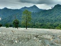 Τοπίο των λόφων Jayanti, δυτική Βεγγάλη, Ινδία Στοκ Φωτογραφίες
