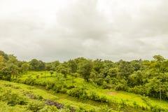 Τοπίο των σειρών βουνών δυτικού Ghats στην κατάσταση Maharashtra κοντά στο φράγμα wakanda στην Ινδία στοκ εικόνες με δικαίωμα ελεύθερης χρήσης