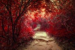 Τοπίο φαντασίας στο τροπικό δάσος ζουγκλών με τη σήραγγα Στοκ εικόνα με δικαίωμα ελεύθερης χρήσης