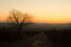 Τοπίο φθινοπώρου ή χειμώνα με το δρόμο και τα δέντρα Το χρυσό ηλιοβασίλεμα ελαφριών ακτίνων Σε ένα υπόβαθρο των βουνών και τον ου Στοκ εικόνες με δικαίωμα ελεύθερης χρήσης