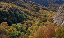 Τοπίο φθινοπώρου βουνών με το ζωηρόχρωμο μικτό δάσος Στοκ Φωτογραφία