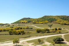 τοπίο φθινοπώρου βουνών πέντε χρώματος Στοκ εικόνα με δικαίωμα ελεύθερης χρήσης