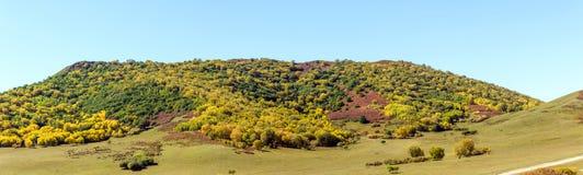 τοπίο φθινοπώρου βουνών πέντε χρώματος Στοκ Φωτογραφίες