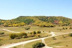 τοπίο φθινοπώρου βουνών πέντε χρώματος Στοκ εικόνες με δικαίωμα ελεύθερης χρήσης