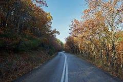 Τοπίο φθινοπώρου, δρόμος τούβλου μεταξύ των δέντρων Στοκ Εικόνα