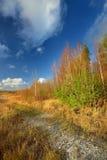 Τοπίο φθινοπώρου ενάντια Στοκ Φωτογραφία