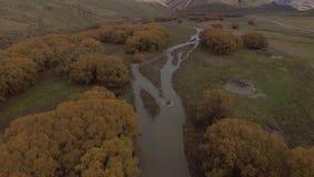 Τοπίο φθινοπώρου, εναέριο μήκος σε πόδηα Νέα Ζηλανδία απόθεμα βίντεο