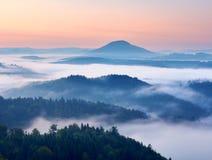 Τοπίο φθινοπώρου Ευγενής υδρονέφωση, θαυμάσια κρεμώδης ομίχλη φθινοπώρου επάνω από τα δάση Λόφος που αυξάνεται υψηλός από την ομί Στοκ Εικόνα