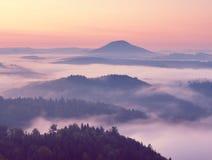 Τοπίο φθινοπώρου Ευγενής υδρονέφωση, θαυμάσια κρεμώδης ομίχλη φθινοπώρου επάνω από τα δάση Λόφος που αυξάνεται υψηλός από την ομί Στοκ φωτογραφία με δικαίωμα ελεύθερης χρήσης