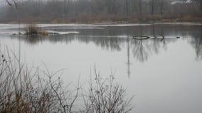 Τοπίο φθινοπώρου, θλιβερός misty δασικός ποταμός φιλμ μικρού μήκους
