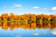 Τοπίο φθινοπώρου, κίτρινα δέντρα φύλλων στην όχθη ποταμού στο μπλε ουρανό και το άσπρο υπόβαθρο σύννεφων την ηλιόλουστη ημέρα, αν στοκ εικόνα