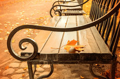 Τοπίο φθινοπώρου - κιτρινισμένο φύλλο φθινοπώρου στον ξύλινο μόνο πάγκο στο πάρκο φθινοπώρου Στοκ Εικόνα