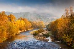 Τοπίο φθινοπώρου με έναν ποταμό το ομιχλώδες πρωί στοκ φωτογραφίες με δικαίωμα ελεύθερης χρήσης
