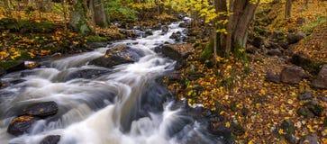 Τοπίο φθινοπώρου με ένα ρεύμα και τα ορμητικά σημεία ποταμού Στοκ Εικόνες