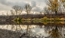 Τοπίο φθινοπώρου με τα δέντρα και τον ποταμό Στοκ Εικόνα