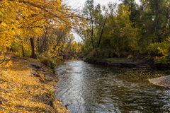 Τοπίο φθινοπώρου με τα δέντρα και τον ποταμό Στοκ εικόνα με δικαίωμα ελεύθερης χρήσης
