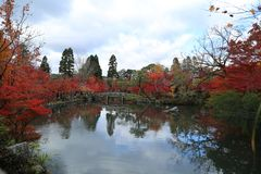 Τοπίο φθινοπώρου με τη λίμνη και τα δέντρα στοκ εικόνες