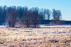 Τοπίο φθινοπώρου με τον παγετό στοκ εικόνα