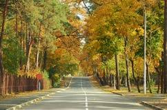 Τοπίο φθινοπώρου με το δρόμο και τα όμορφα χρωματισμένα δέντρα στοκ εικόνα με δικαίωμα ελεύθερης χρήσης