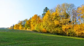 Τοπίο φθινοπώρου με το ζωηρόχρωμο φύλλωμα πτώσης στο πορτοκάλι και κίτρινος Στοκ Εικόνες