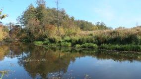 Τοπίο φθινοπώρου Ξηρά πτώση φύλλων στην επιφάνεια νερού του ποταμού απόθεμα βίντεο