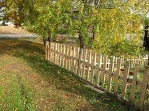 Τοπίο φθινοπώρου, πάρκο φθινοπώρου μέσα με τα χρυσά δέντρα φθινοπώρου στον ηλιόλουστο καιρό Στοκ Φωτογραφίες